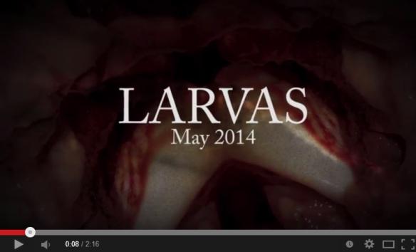 larvas-lyric-video